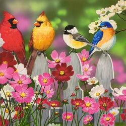Пазл онлайн: Птичья компания и космеи