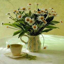 Пазл онлайн: Ромашковый чай