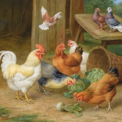 Пазл онлайн: Птичья компания