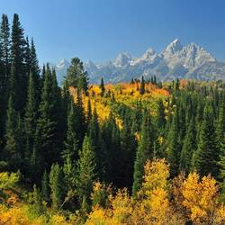 Пазл онлайн: Лес и горы