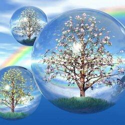 Пазл онлайн: Деревья в каплях