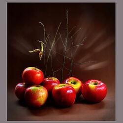 Пазл онлайн: Яблоки