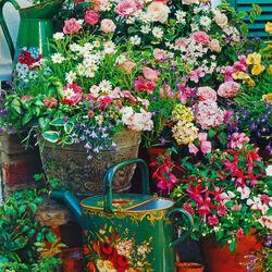 Пазл онлайн: Цветущий уголок