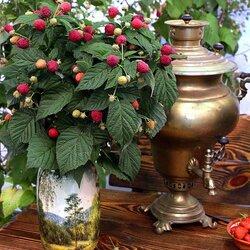 Пазл онлайн: Букет малины у самовара