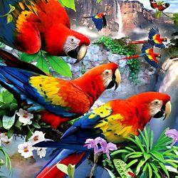 Пазл онлайн: Красивые попугаи