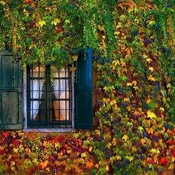 Пазл онлайн: Между летом и осенью