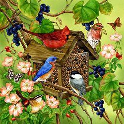 Пазл онлайн: Птицы у кормушки