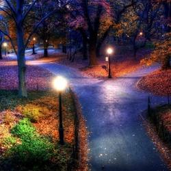Пазл онлайн: Ночь в парке