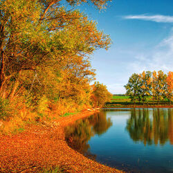 Пазл онлайн: Осень у реки