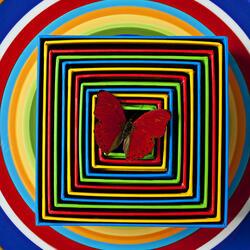 Пазл онлайн: Красная бабочка на разноцветных тарелках