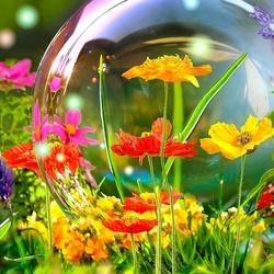 Пазл онлайн: Мыльный пузырь
