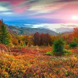 Пазл онлайн: Рассвет в горах