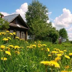 Пазл онлайн: Лето в деревне