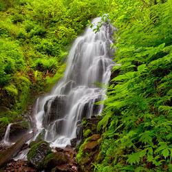 Пазл онлайн: Маленький водопад