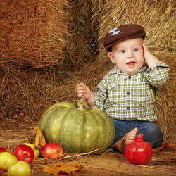 Пазл онлайн: Осенний урожай
