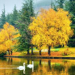 Пазл онлайн: Осенняя импресия