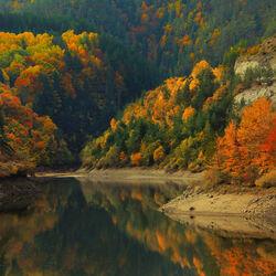 Пазл онлайн: Горы в осеннем наряде