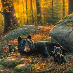 Пазл онлайн: Утро в лесу