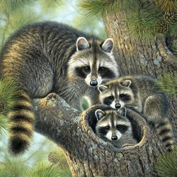 Пазл онлайн: Мир животных