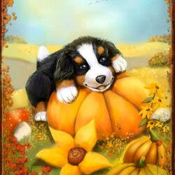 Пазл онлайн: Осенний щенок