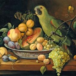 Пазл онлайн: Обед для попугая