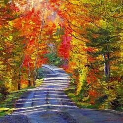 Пазл онлайн: Осенние дороги