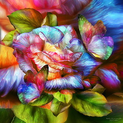Пазл онлайн: Роза и бабочки
