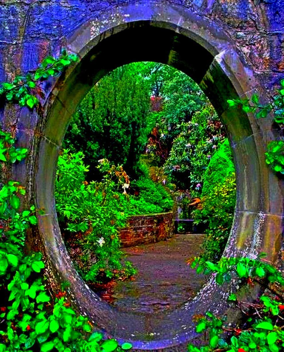 таинственный сад фото говорит