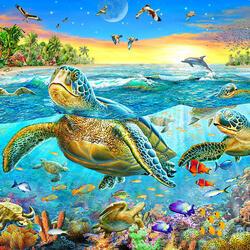 Пазл онлайн: Остров черепах