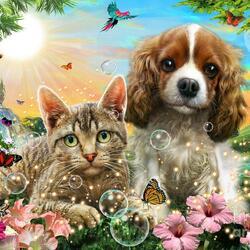 Пазл онлайн: Кот и пёсик