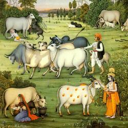 Пазл онлайн: Коровы