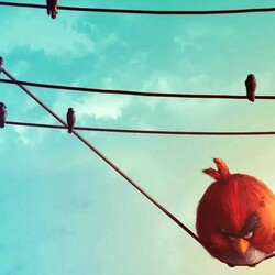 Пазл онлайн: Злые птички
