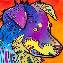Пазл онлайн: Австралийская пастушечья собака