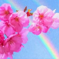 Пазл онлайн: Розовые цветы яблони