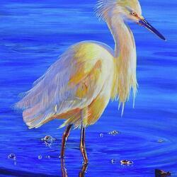 Пазл онлайн: Птицы Флориды