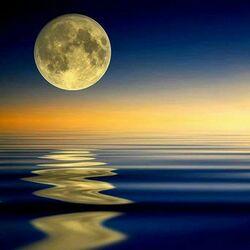 Пазл онлайн: Полная луна
