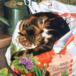 Пазл онлайн: Кот-садовник