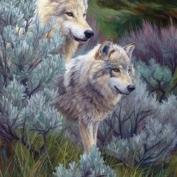 Пазл онлайн: Два волка