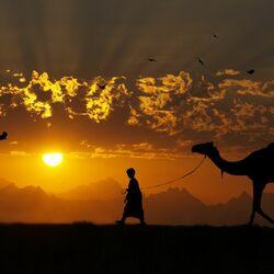 Пазл онлайн: Закат в Африке