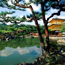 Пазл онлайн: Пагода у озера