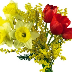 Пазл онлайн: Весна идет!