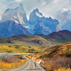 Пазл онлайн: Торрес дель Пайне