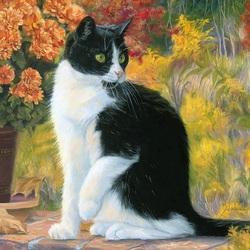 Пазл онлайн: Чёрно-белый кот