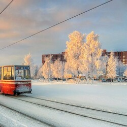 Пазл онлайн: Питерский трамвайчик
