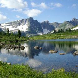 Пазл онлайн: Живая природа Сибири