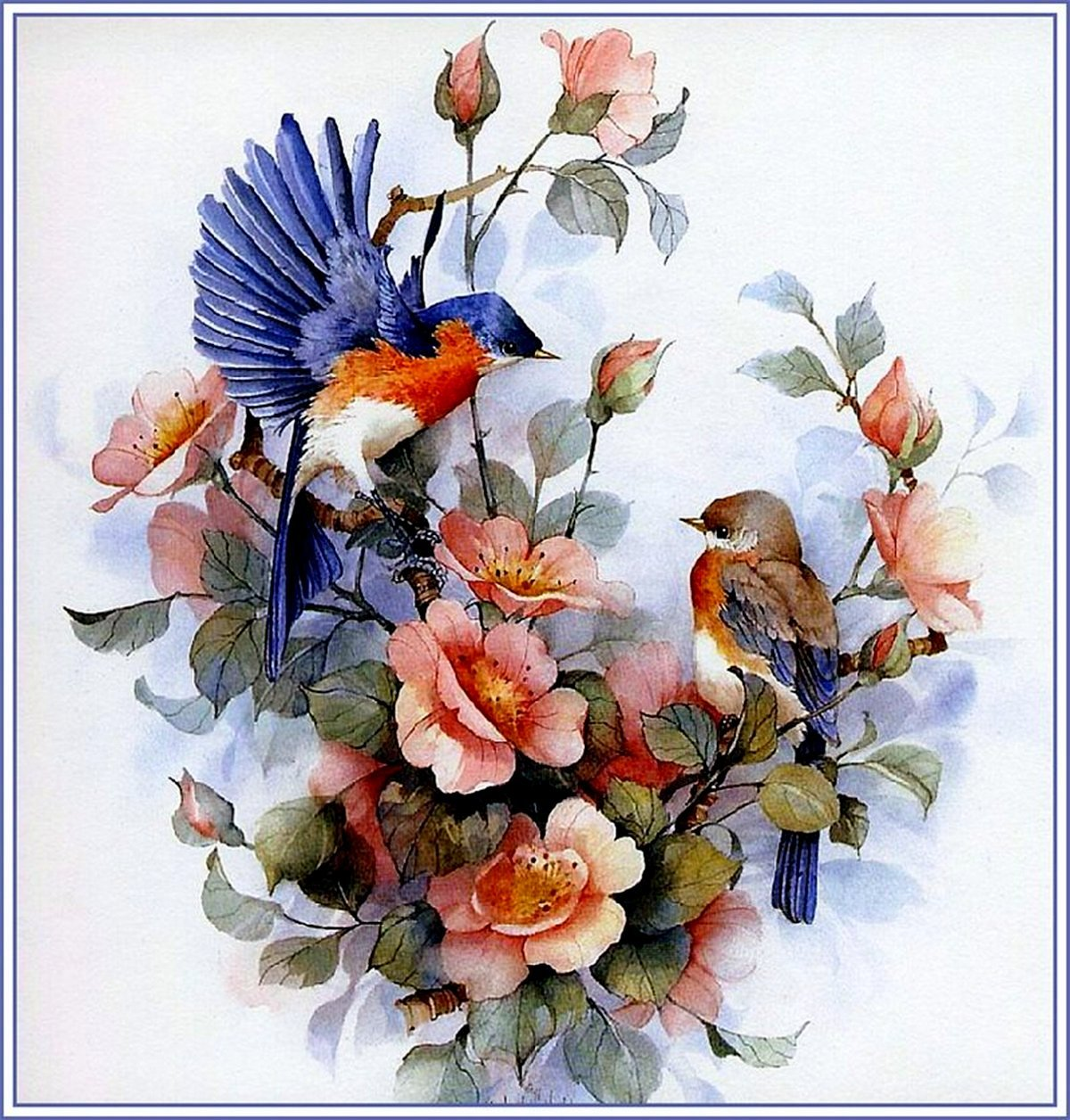 Цветы с птичками