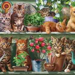 Пазл онлайн: Котята на полке