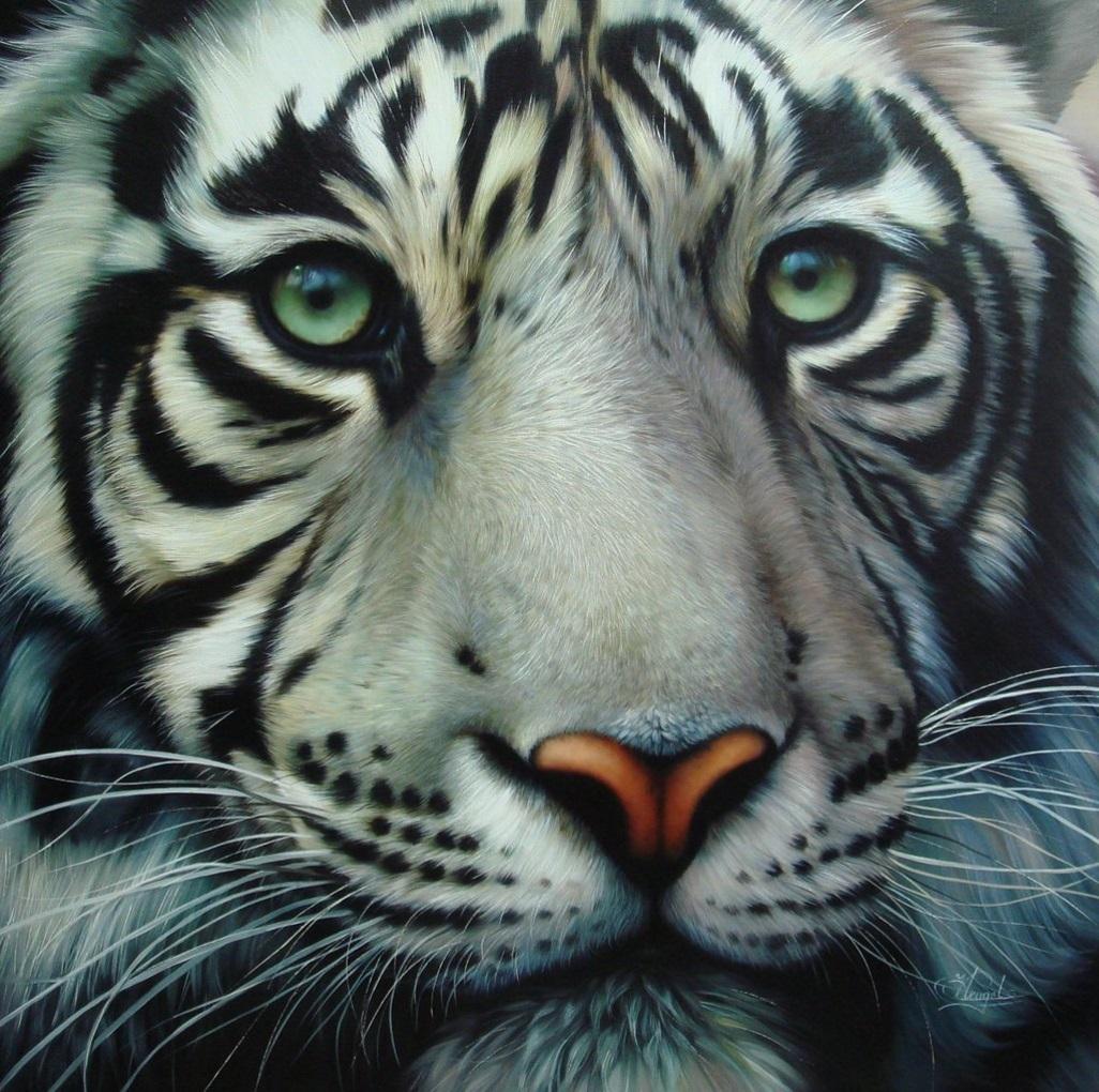 Фото тигра на аву вк