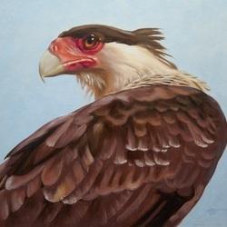 Пазл онлайн: Орёл