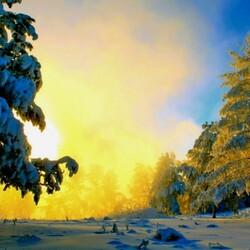 Пазл онлайн: Солнце встает